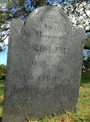 Thurston, Violet