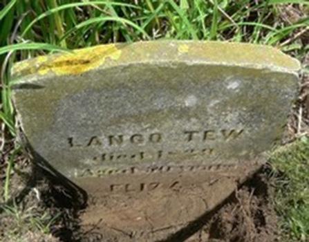 Tew, Lango and Eliza