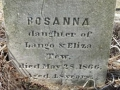 Tew, Rosanna